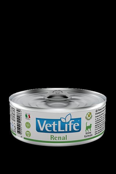 VetLife Renal (Katze)