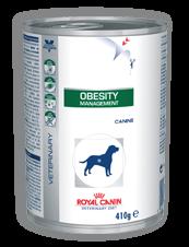 Obesity Management (Hund)