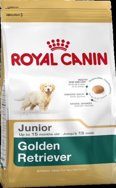 Golden Retreiver Puppy (Hund)
