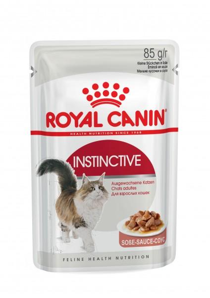 Instinctive (Katze)