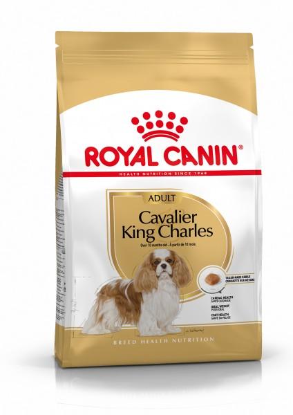 Cavalier King Charles (Hund)