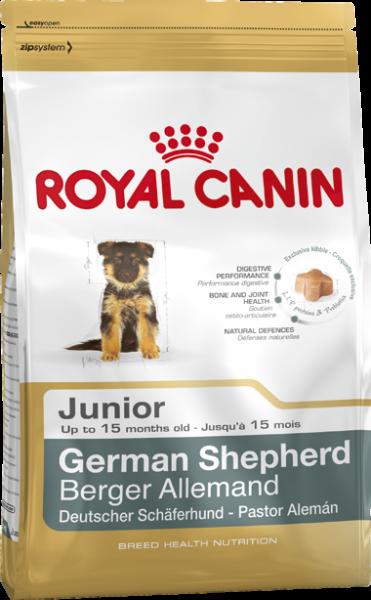 Deutscher Schäfer Puppy (Hund)