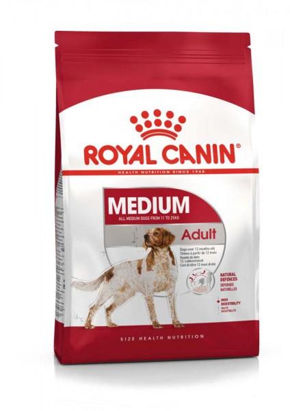 Medium Adult (Hund)