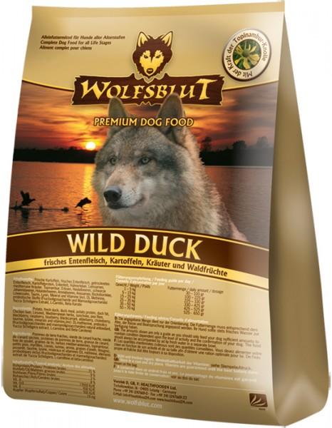 Wild Duck Adult