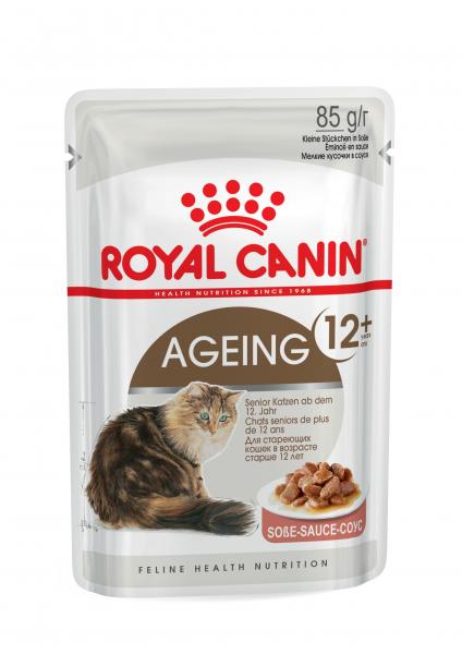 Ageing +12 (Katze)