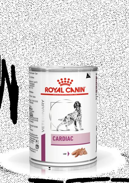Cardiac (Hund)