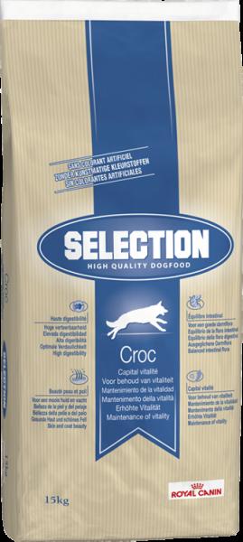 Selection HQD Croc (Hund)