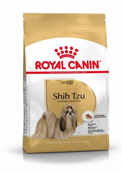 Shih Tzu (Hund)