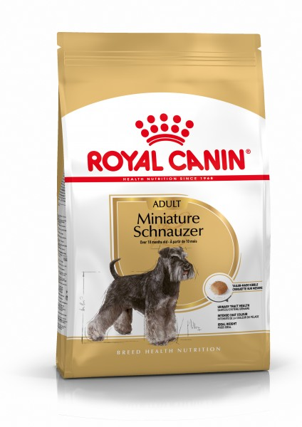 Miniature Schnauzer (Hund)