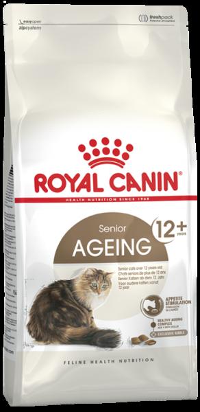 Senior Ageing +12 (Katze)