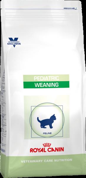 Pediatric Weaning (Katze)