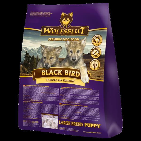 Black Bird Puppy Large Breed