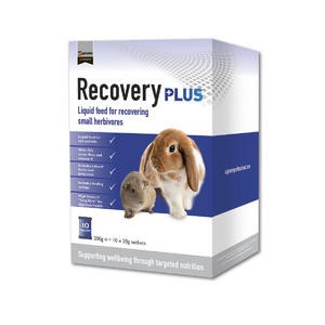 Science RecoveryPlus 10x20g Beutel