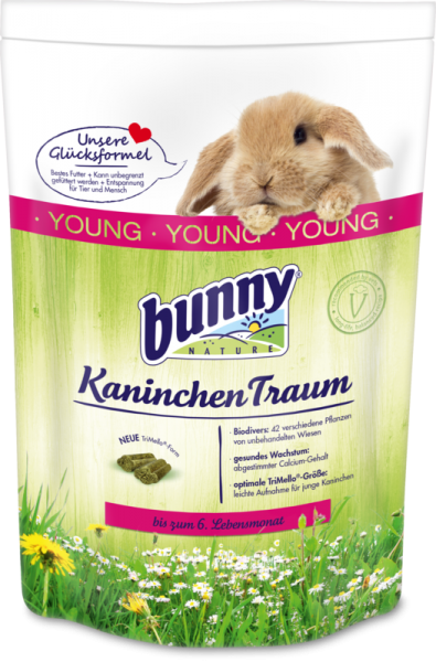 Kaninchen Traum Young