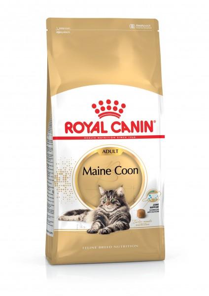 Maine Coon (Katze)