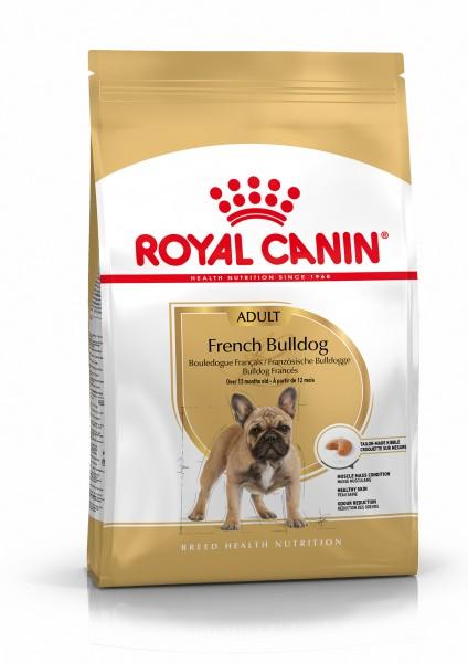 Französische Bulldogge (Hund)