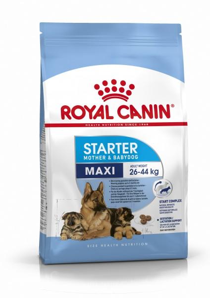 Maxi Starter (Hund)