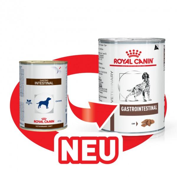 Gastro Intestinal (Hund)