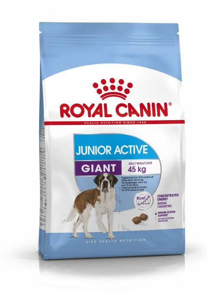 Giant Junior Active (Hund)