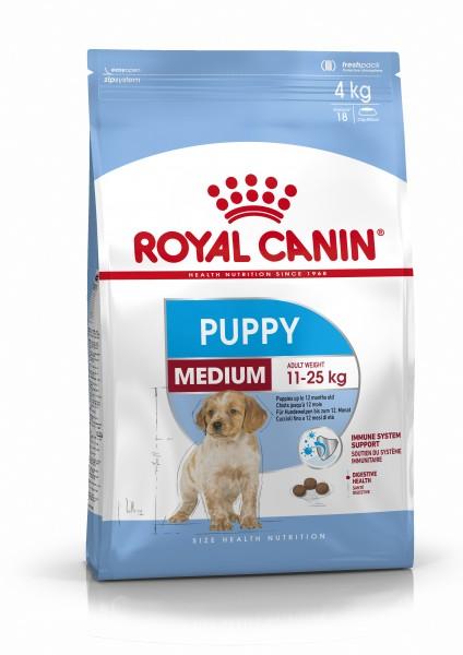 Medium Puppy (Hund)