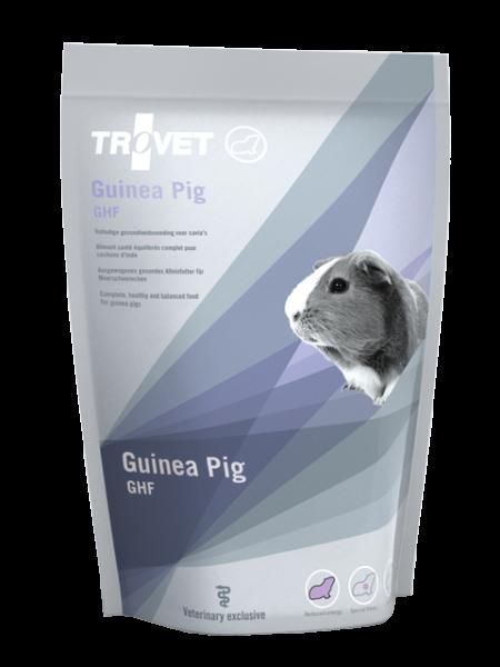 Guinea Pig GHF (Meerschweinchen)
