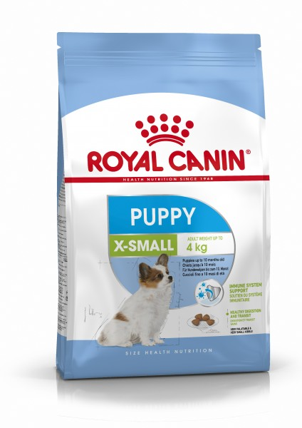 X-Small Puppy (Hund)