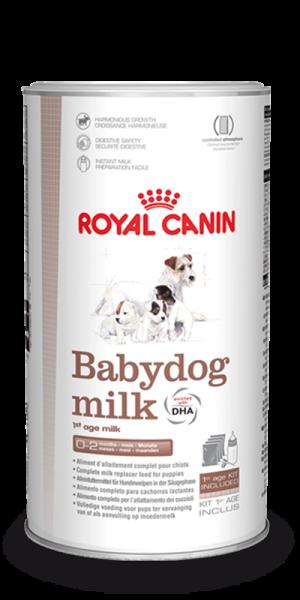Baby Dog Milk (Hund)