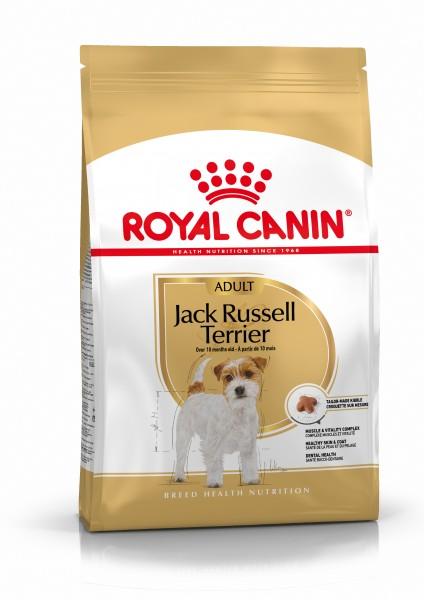 Jack Russel Terrier (Hund)
