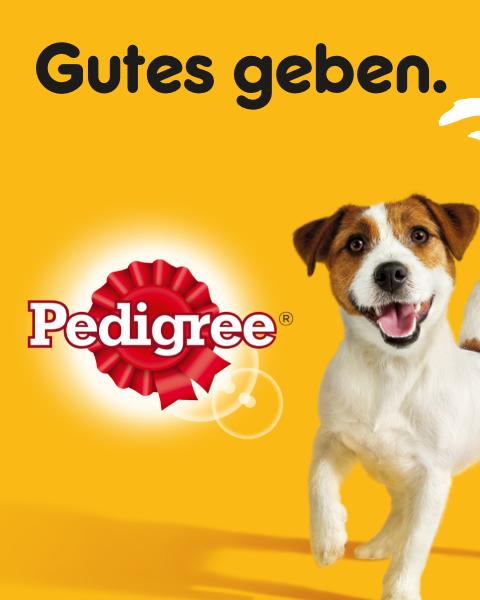 pedigree_small_shop