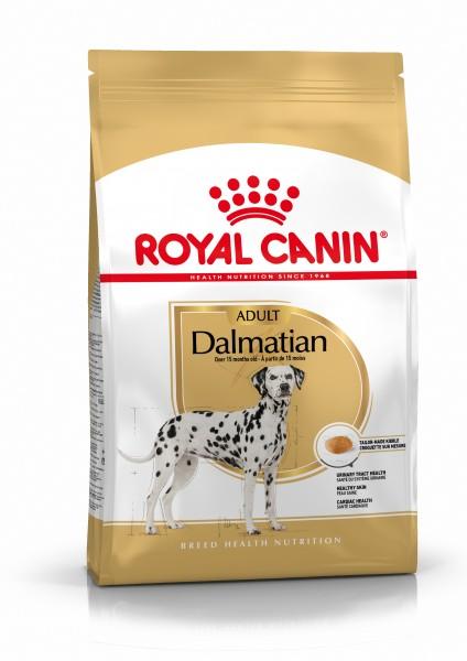 Dalmatiner (Hund)