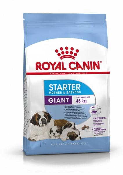 Giant Starter (Hund)