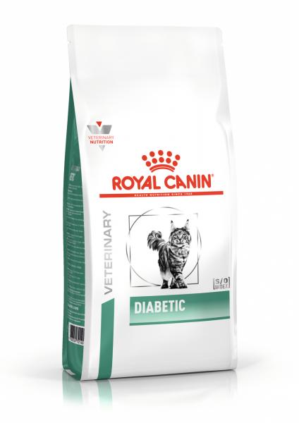 Diabetic (Katze)
