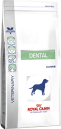 Dental Large Dog (Hund)