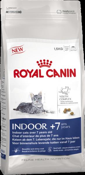 Indoor 7+ (Katze)