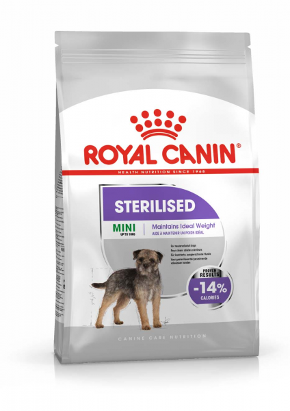 Sterilised Mini Hund