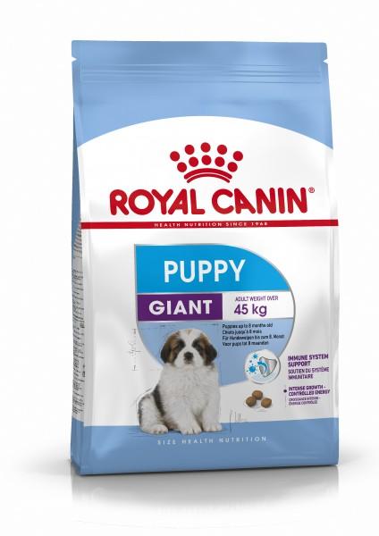 Giant Puppy (Hund)